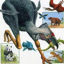 Вымершие животные сегодня рядом с нами?